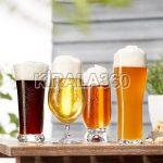 Bira Bardağı Kiralama
