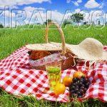 Piknik Örtüsü Kiralama