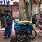Salatalıkçı Arabası Kiralama