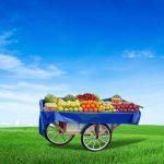Seyyar meyve arabası kiralama